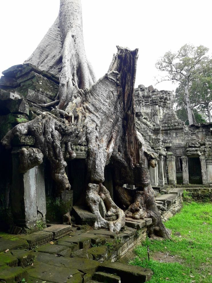How To Conquer The Temples of Angkor Wat in One Day