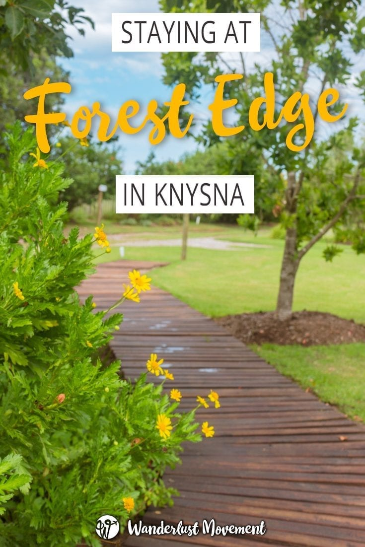 Staying At Forest Edge – Nature Lover's Retreat In Knysna