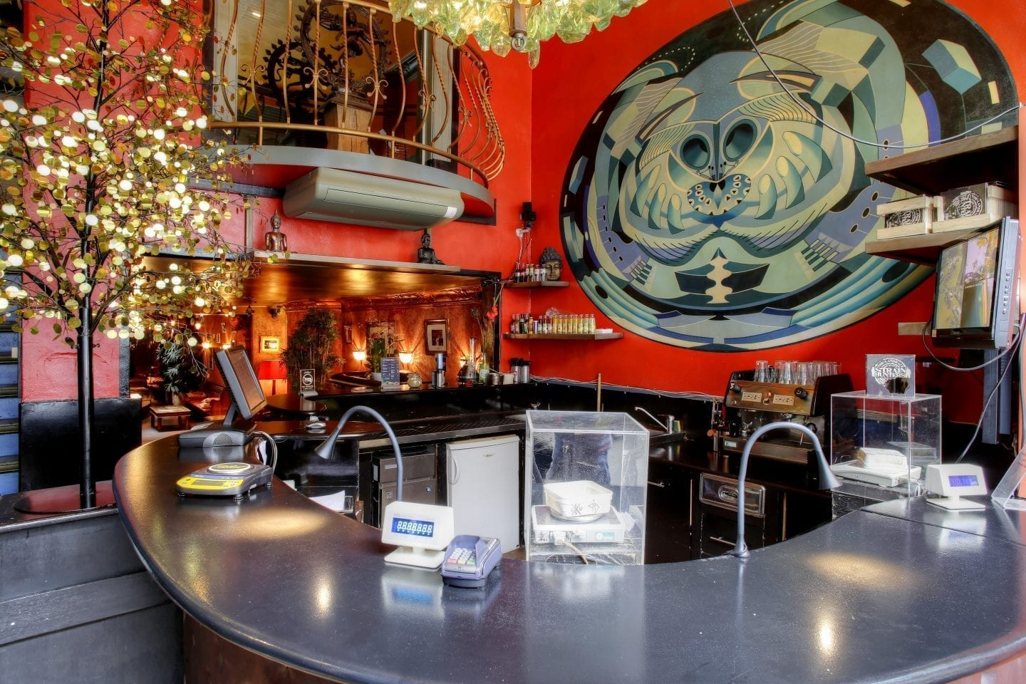 Amsterdam Coffeeshops: How to Get Stoned Like a Pro
