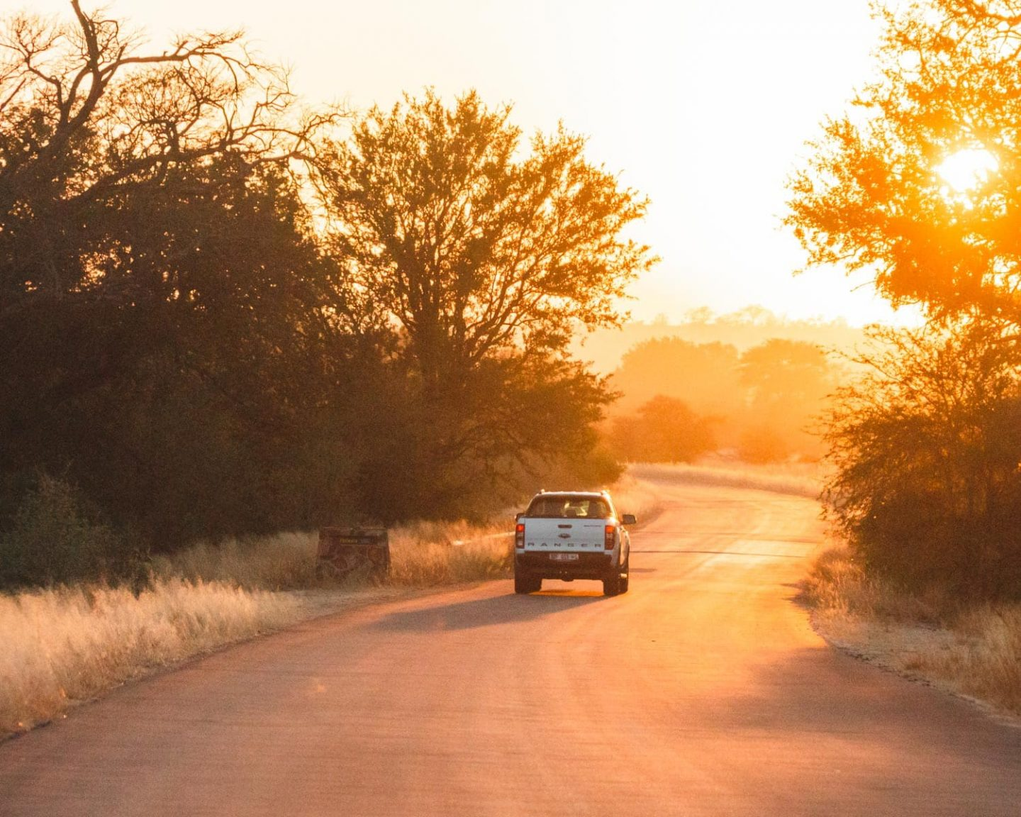 driving through kruger national park at sunset