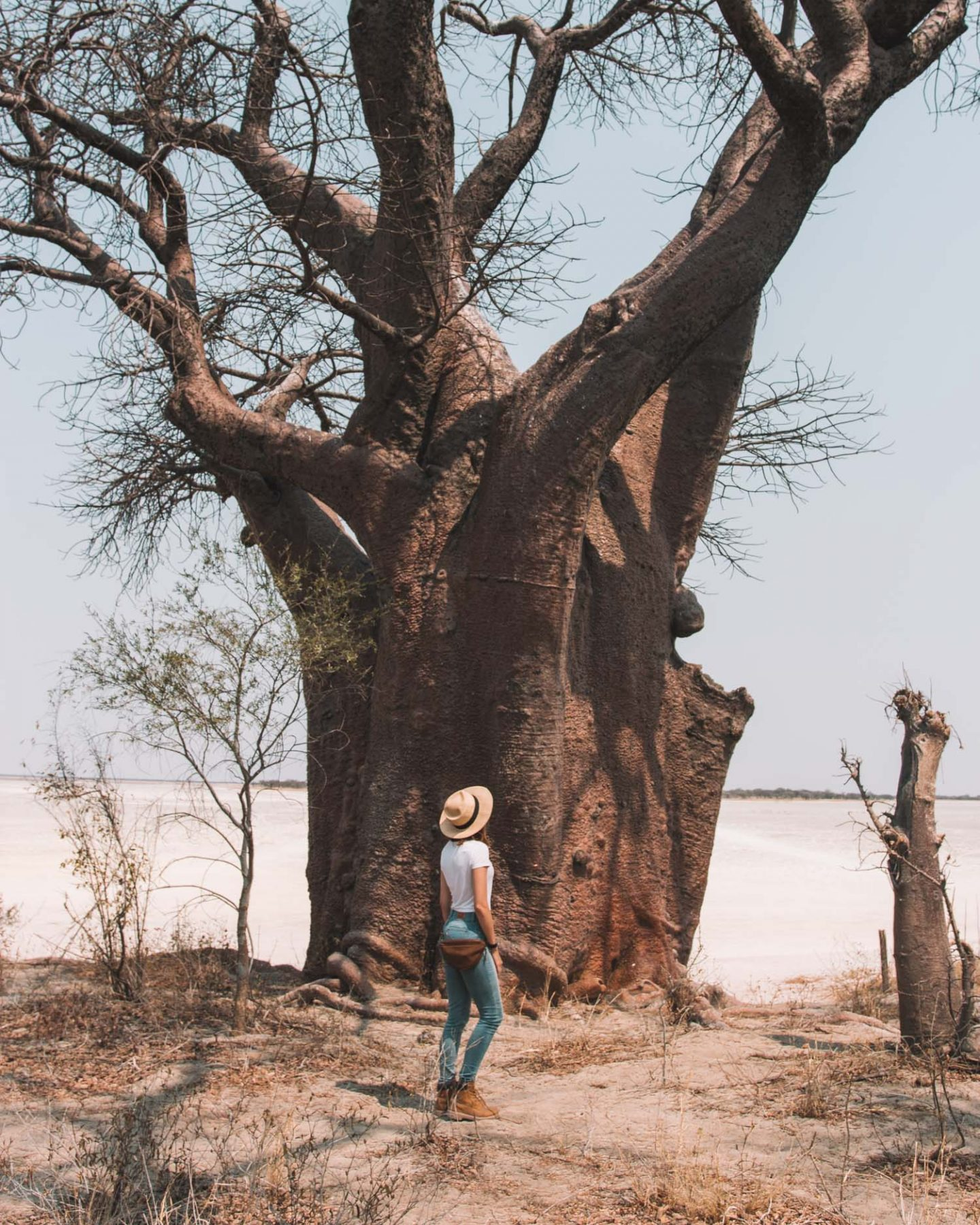 girl at baines baobabs in botswana