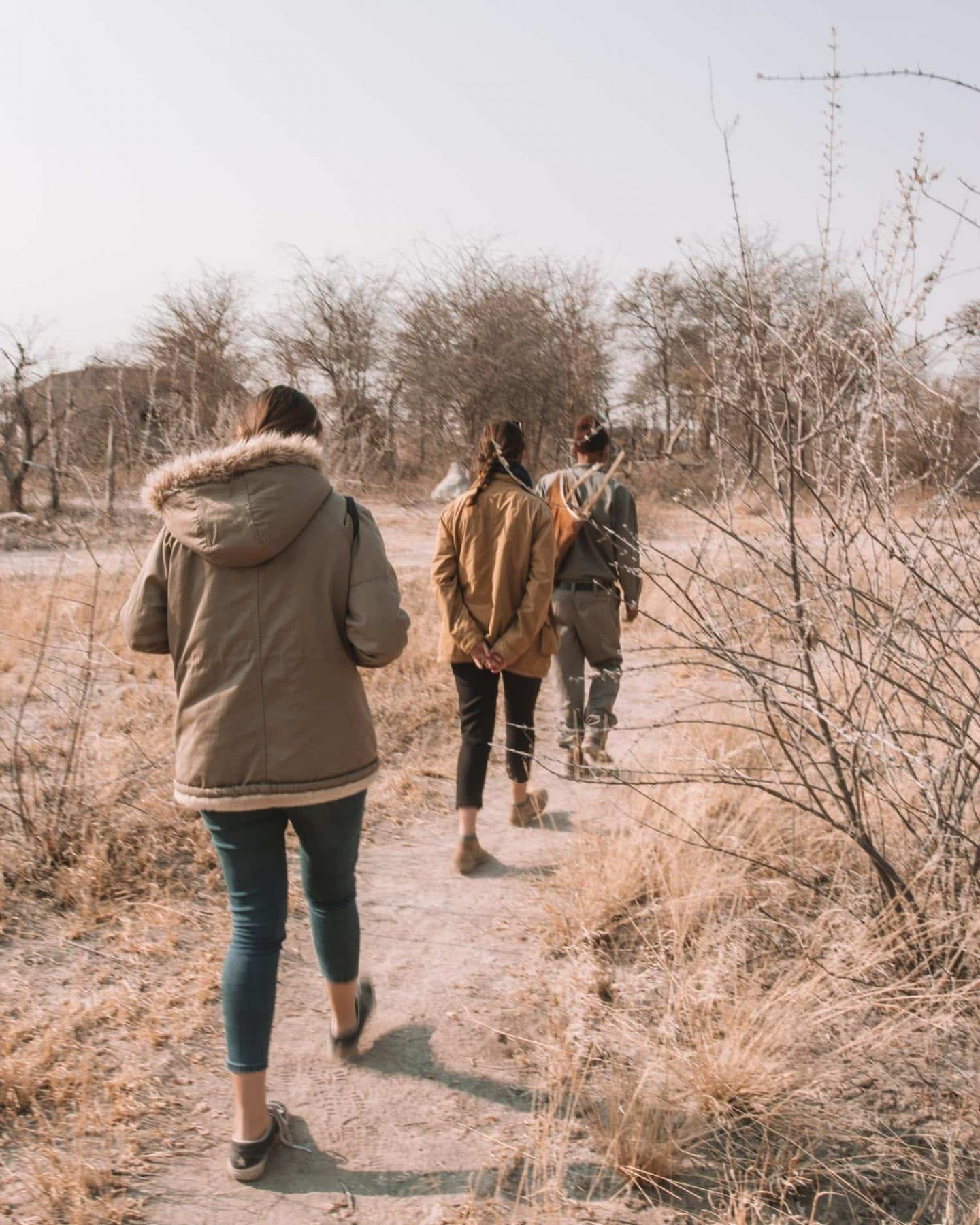 bushman walk in nxai pan camp