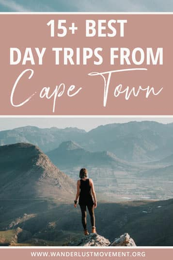 Hop into your car and explore some of the best day trips from Cape Town! Travel to Hermanus, Stellenbosch, Cederberg and more!