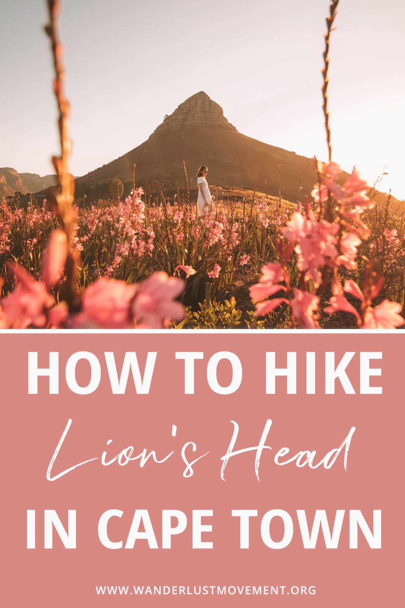 Lion\'s Head Hike in Cape Town: Full Hiking Guide