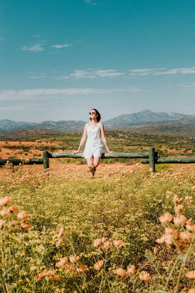 girl by wildflowers in namaqua national park
